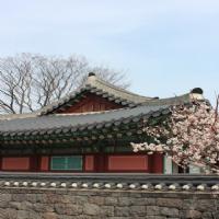Spotlight Seoul Hospitality 1H 2018