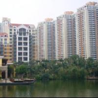 Shenzhen Residential Briefing - Spring 2018