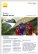 Singapore Retail Briefing Q4 2012